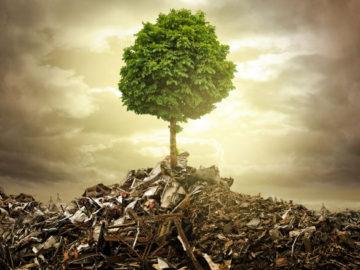 umweltfreundliche-entsorgun
