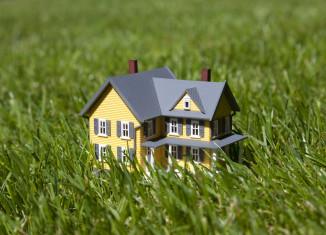 Tiny Haus