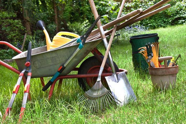 Den Garten pflegen – mit dem richtigen Werkzeug