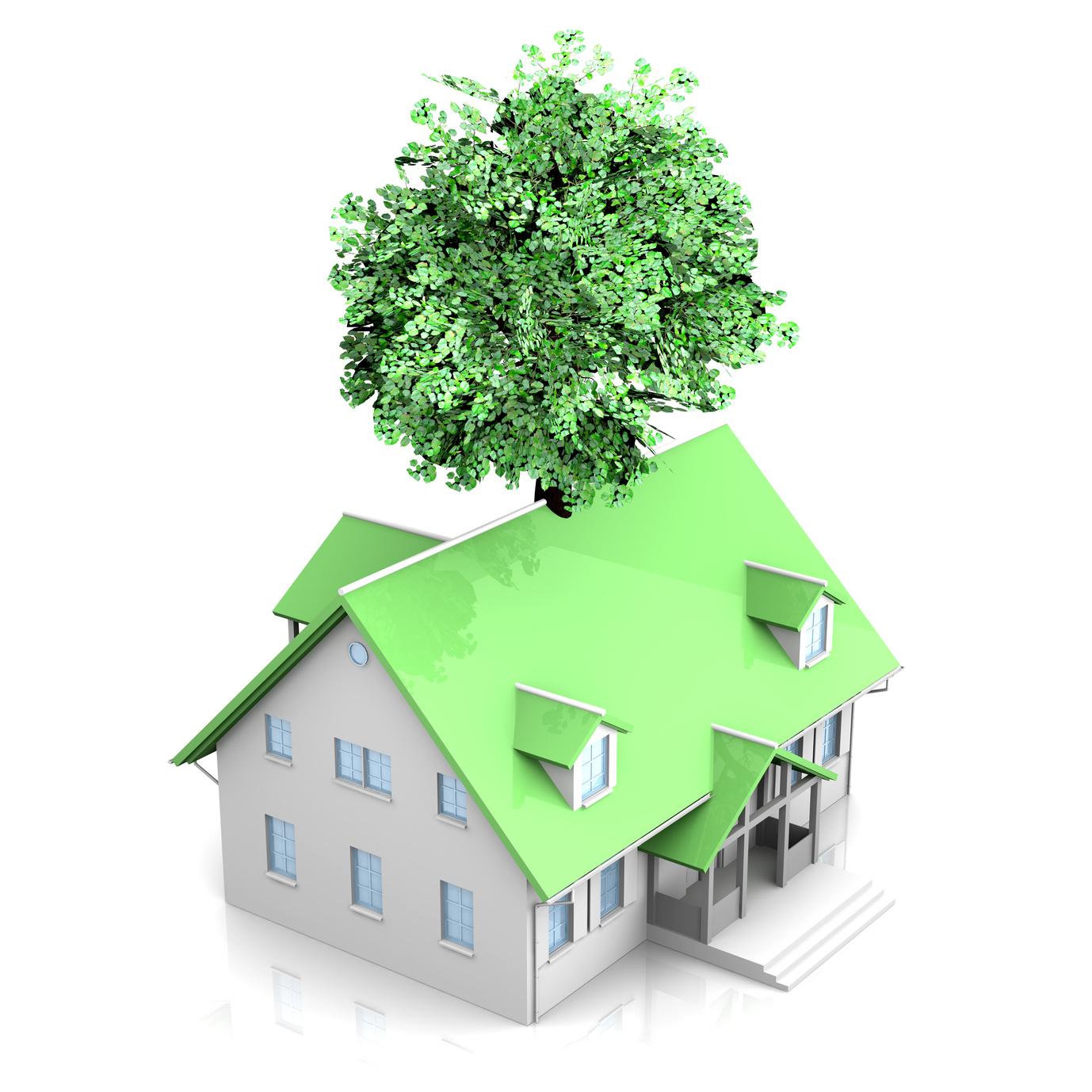 Ein Eigenheim ohne Schadstoffe – heißt gesund bauen und wohnen