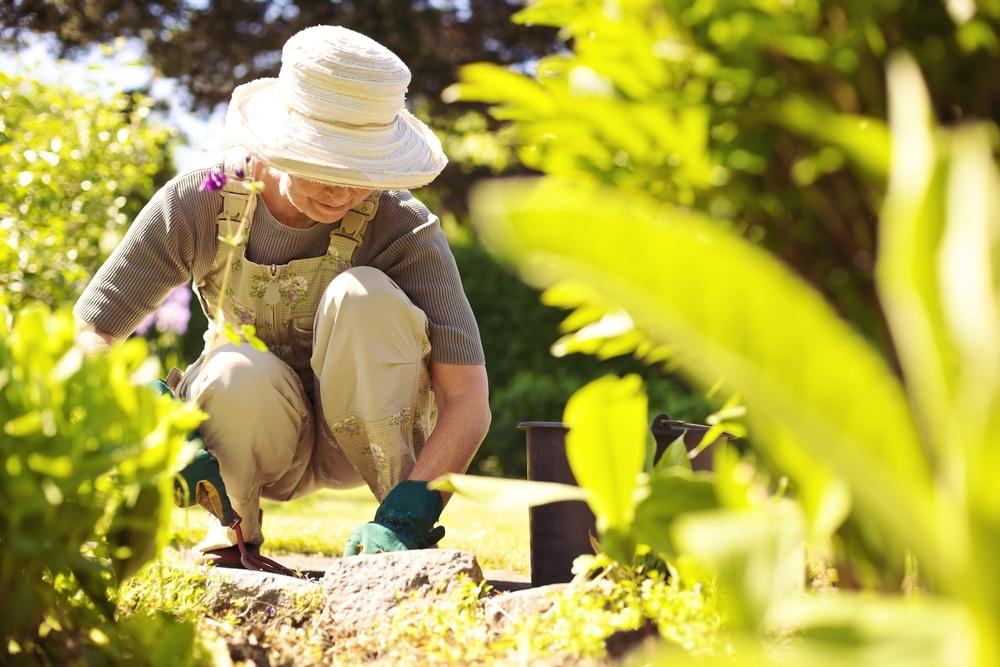 Beliebte Gartenstile von praktisch bis modern