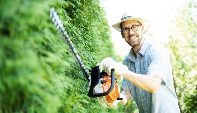 Sommer: Zeit, die Hecken zu schneiden und zu pflegen