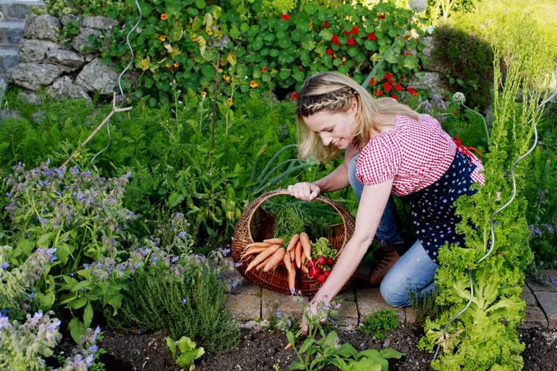 Selbstversorgergarten anlegen – was gibt es zu beachten